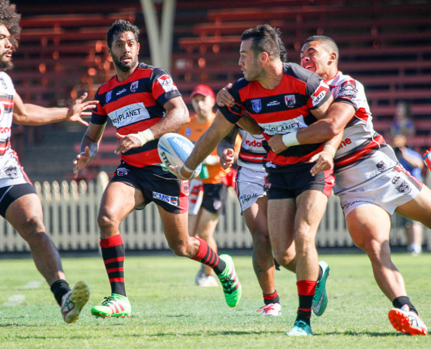 Image: Michael Oldfield about to pass to Dane Nielsen - Intrust Super Premiership - Round 6 - 2016 - North Sydney Bears V New Zealand Warriors