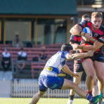 Image: George Burgess - Intrust Super Premiership | Round 16 | North Sydney Vs Canterbury-Bankstown | North Sydney Oval | 25/06/2017. Photo Steve Little www.redandblackzone.com.