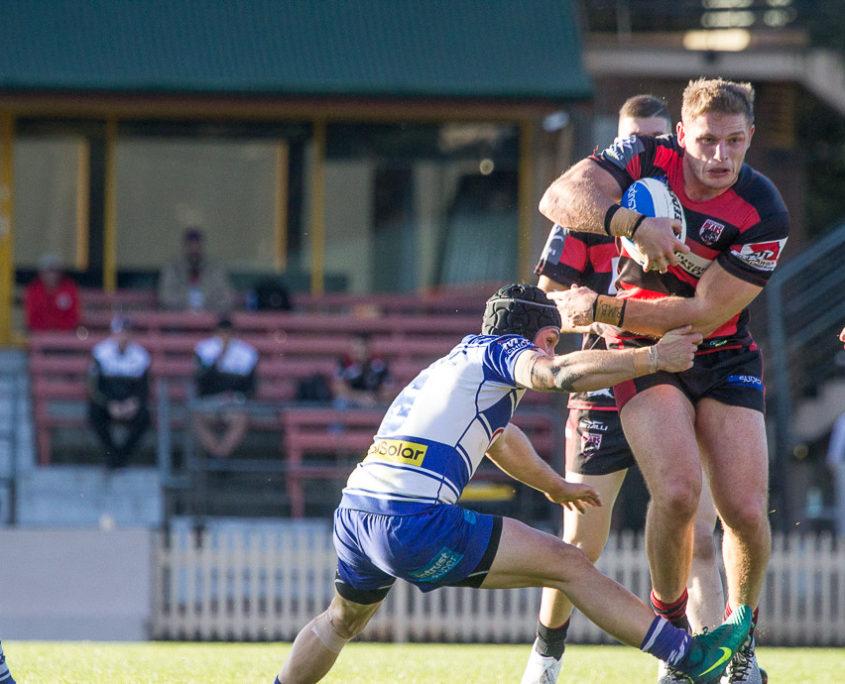 Image: George Burgess - Intrust Super Premiership | Round 16 | North Sydney Vs Canterbury-Bankstown | North Sydney Oval | 25/06/2017. Photo Steve Little www.redandblackzone.com.