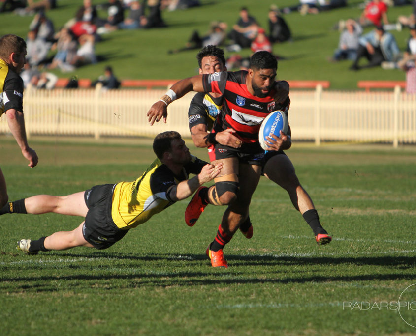 Image: A hard running Tautalatasi Tasi in the centres for the Bears - Intrust Super Premiership | Round 19 | North Sydney Vs Mt Pritchard | North Sydney Oval | 16/07/2017. Photo Ian Reilly.