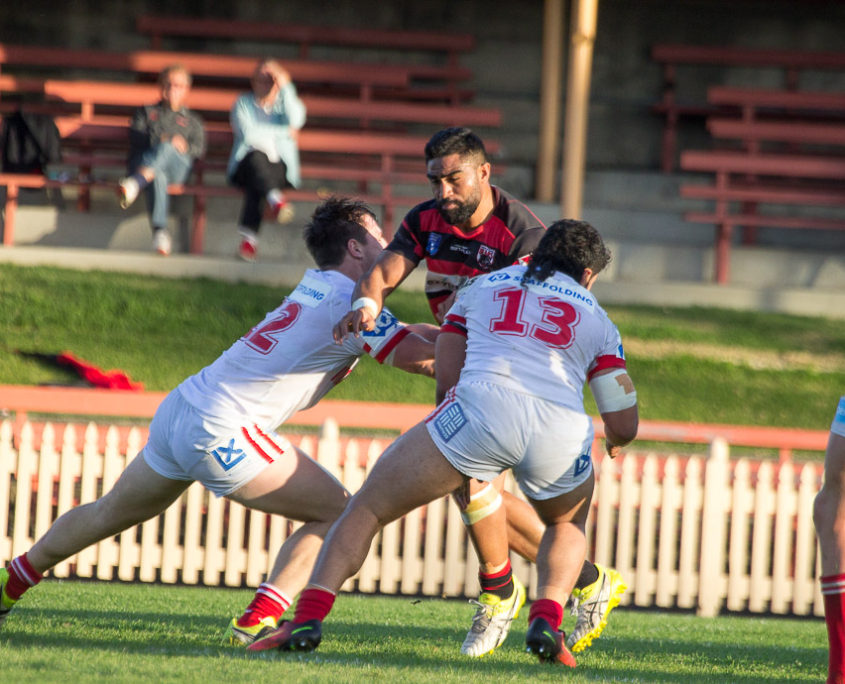 Image: Norths centre Tautalatasi Tasi faces the Cutters defense - Intrust Super Premiership - Round 23 - 2016 - North Sydney Bears V Illawarra Cutters