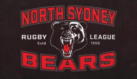 Bears Stubby Holder Flat