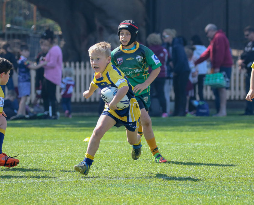 Image: North Sydney District [U8s] | Final | Hills Hawks Vs Willoughby Roos | North Sydney Oval 02/09/2017. Photo Steve Little www.redandblackzone.com.